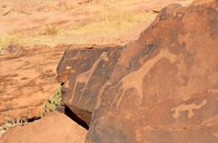twyfelfontein archaeological site, rock engravings of african wildlife subjec - stock photo