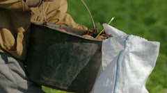 From Bucket Into Sack - stock footage
