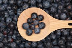 blueberries on a wooden spoon - stock photo