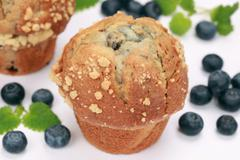 Fresh blueberry muffins Stock Photos