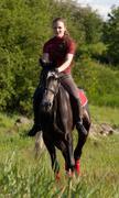 a girl riding a horse at a gallop - stock photo