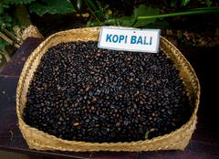 Bali coffee Stock Photos