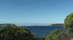 Sea panorama and spurge Stock Footage