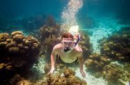 Snorkeler Stock Photos