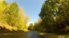 Driving through gold and green trees on a curvy country road in early fall - stock footage