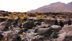 Volcanic Rock Formation 14 Fossil Falls California Stock Footage