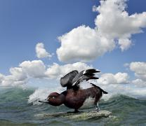 duck on the water - stock illustration