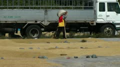 Drying new harvested rice in the Philippines Stock Footage