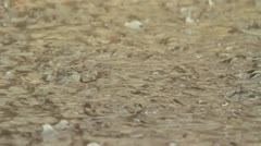 Water drops Are Hitting Wet Surface Stock Footage