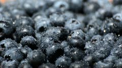 Wet blueberries (endless loop) Stock Footage