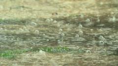 Torrential Rain Stock Footage