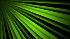 Green sun shine Stock Footage