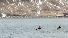 People on sea kayaks approaching Orcas, (Killer Whales) in Icelandic fjord 2 Stock Footage