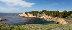 point lobos state natural reserve - stock photo