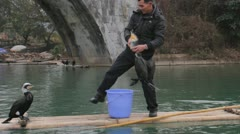 Guilin China famous Chinese Cormorant fishing birds catch fish show performance Stock Footage