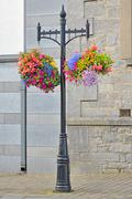 Hanging flower basket Stock Photos