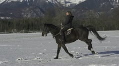 SLOW MOTION: cantering on a snowy field Stock Footage