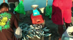 Selling milkfish in the Philippines Stock Footage