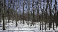 Abandoned 1910 rural homestead - wide shot through trees Stock Footage
