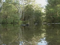Australian billabong in outback Stock Footage