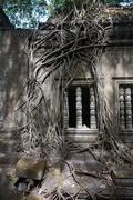 ruins of beng mealea, angkor, cambodia - stock photo