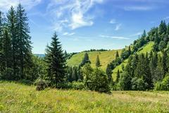 Carpathians landscape Stock Photos