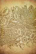 Grunge floral background with space for text or image Stock Photos