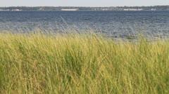 Lake Michigan Coastline Stock Footage