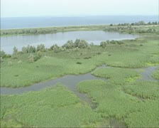 Aerial shot Oostvaardersplassen wetlands, Markermeer + dike in background Stock Footage
