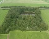 Aerial shot Duck decoy in Dutch polder Stock Footage