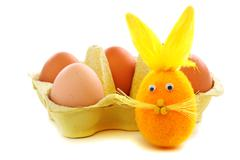 funny easter bunny. - stock photo