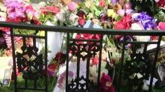 Graceland Stock Footage
