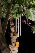 Wind chimes at night Stock Photos