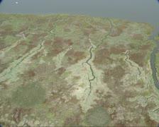 Wetland in Dutch Western Scheldt delta Stock Footage