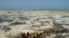 Low tide in the bay Stock Footage