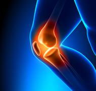 Painful Knee Close-up - stock photo