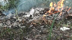Burning Papers (2) Stock Footage