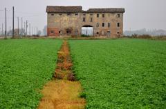 abandoned old farm house - stock photo