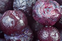 Stock Photo of ripe frozen blueberries