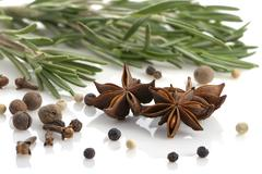 rosemary, peppercorn, cloves and anise - stock photo
