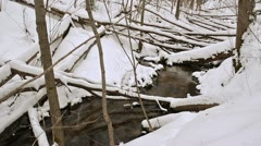 Creek water flow broken trees winter forest cover snow Stock Footage