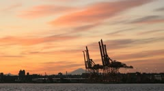 Burrard Inlet Vancouver, Morning Cranes Stock Footage