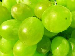 Bunch of white grape close-up - stock photo