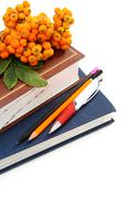 books, pencils, and bunch of rowan. - stock photo
