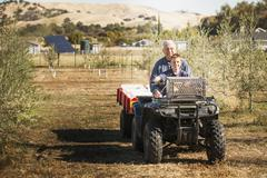 Older Caucasian man and grandson on four wheeler in olive grove - stock photo