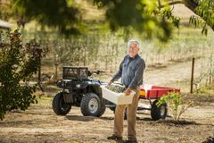 Older Caucasian man working in olive grove - stock photo