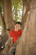 Hispanic boy climbing in tree Stock Photos