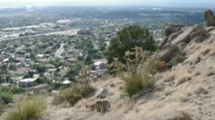 city behind the desert hill - stock footage