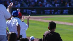 Baseball fans cheering Stock Footage
