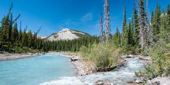 river on the icefield parkway in jasper national park - stock photo